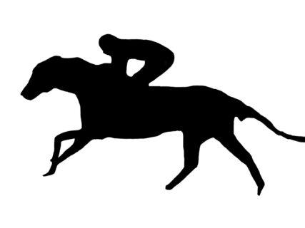 【エンジェルフェイスの19】(牡)~血統診断-馬場・距離適性-~ロードサラブレッドオーナーズクラブ